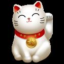 cat_005